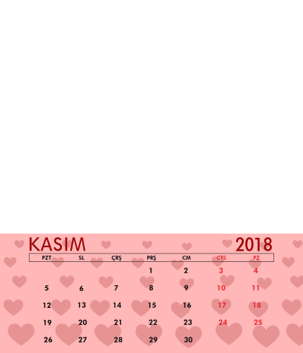 Kasım 2018