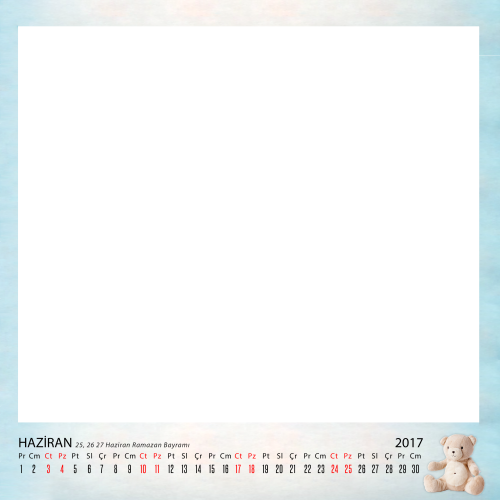 Haziran_2017