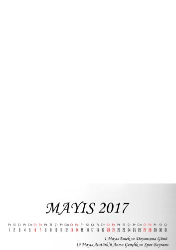 Mayıs 2017