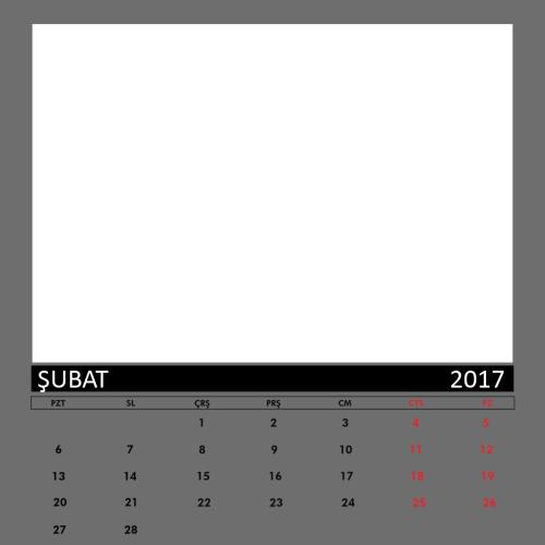 Şubat 2017