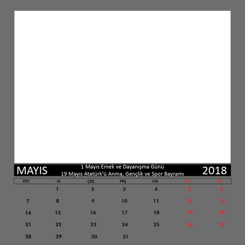 Mayıs 2018