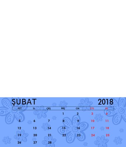 Şubat 2018
