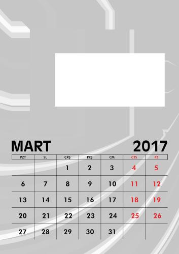 Mart 2017