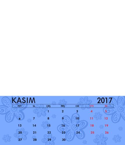 Kasım 2017