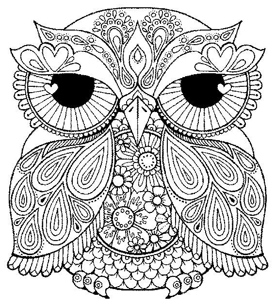 картинки раскраски сова