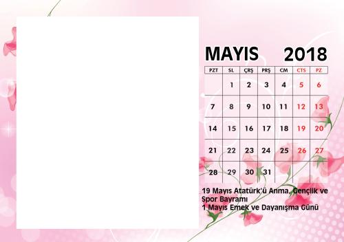 Mayı 2018