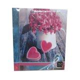 Фотоальбом Image Art SA-20-Р/23*28 16 цветы 20 листов
