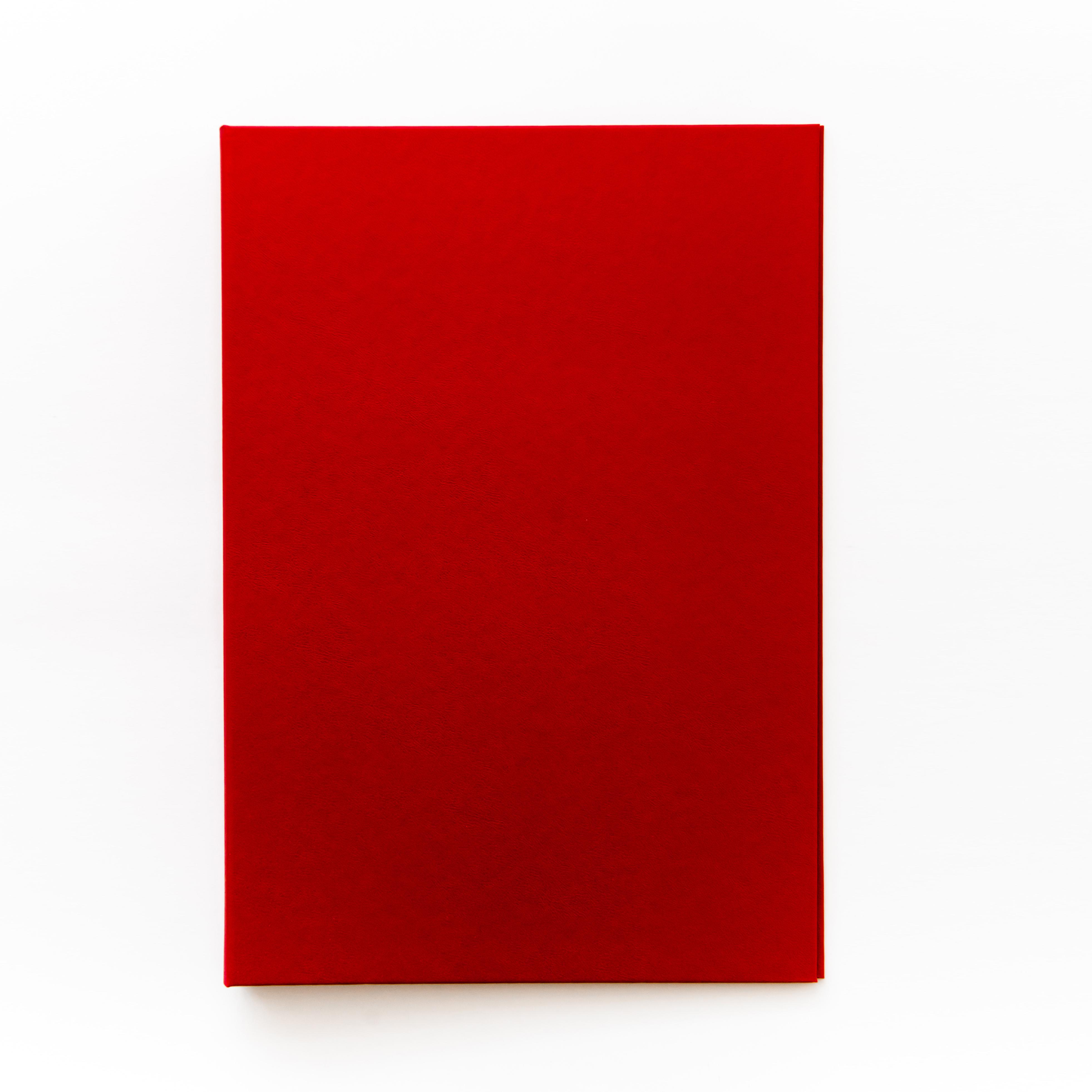 Папка дипломный проекта без надписи (красная)