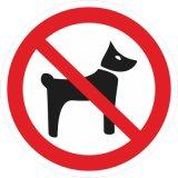 Без животных
