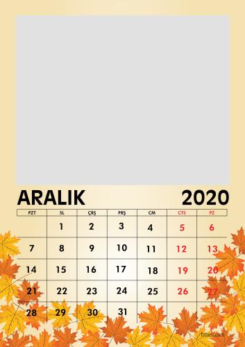 Aralık 2020