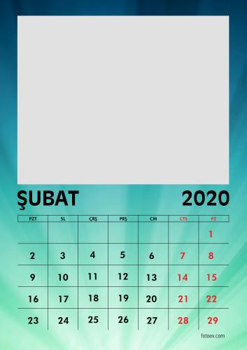 Şubat 2020