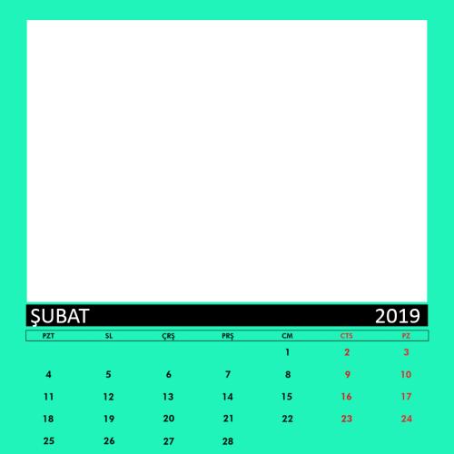 Şubat 2019