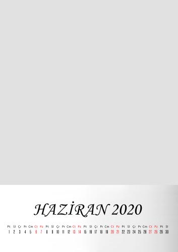 Haziran 2020