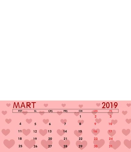 Mart 2019